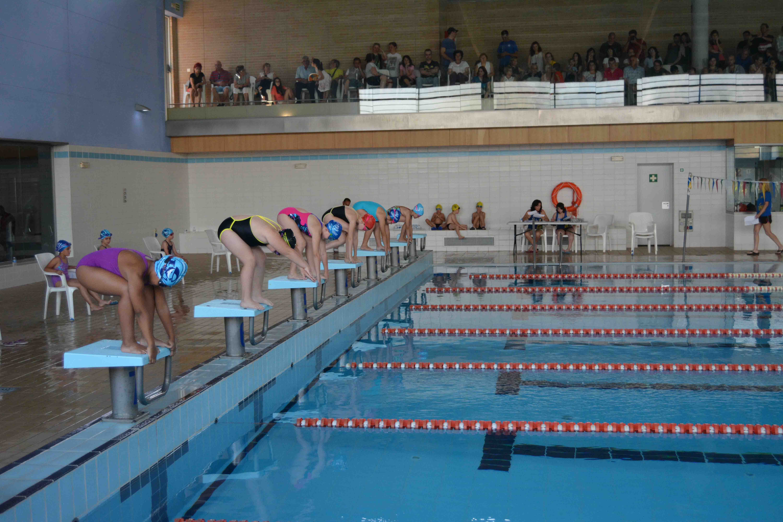 La piscina de aldaia acoge el campeonato de nataci n for Piscina sedavi